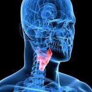 МРТ и КТ горла и гортани