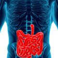 Делают ли МРТ кишечника